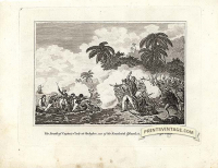 The death of Captain Cook at Owhyhee, on of the Sandwich Islands